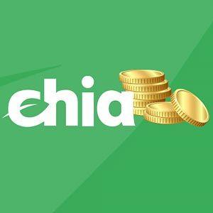 Что такое Chia Coin и как ее добывать?